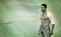 Dino Morea wallpapers